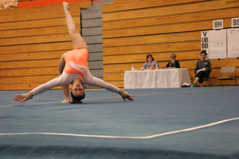 Photo Gallery: Gymnastics takes 3rd at sectionals