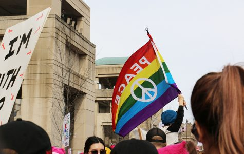 Hoosiers protest in the Women's March on Washington