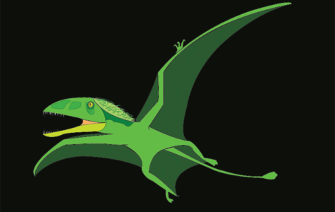 Dino of the Week: Dimorphodon