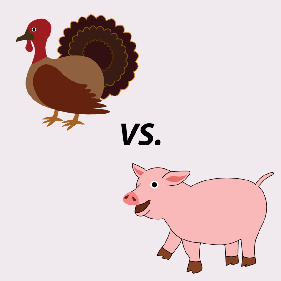 Ham+vs.+Turkey