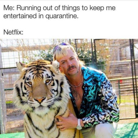 What Tiger King Meme Are You?
