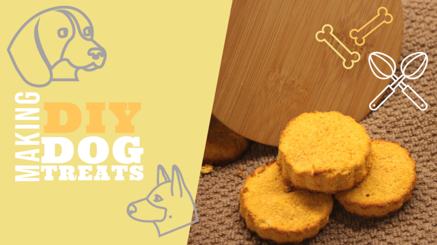 Making Healthy Dog Treats